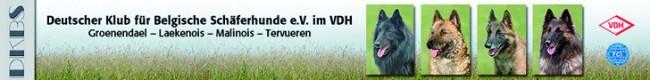 Link zu: Deutscher Klub für Belgische Schäferhunde